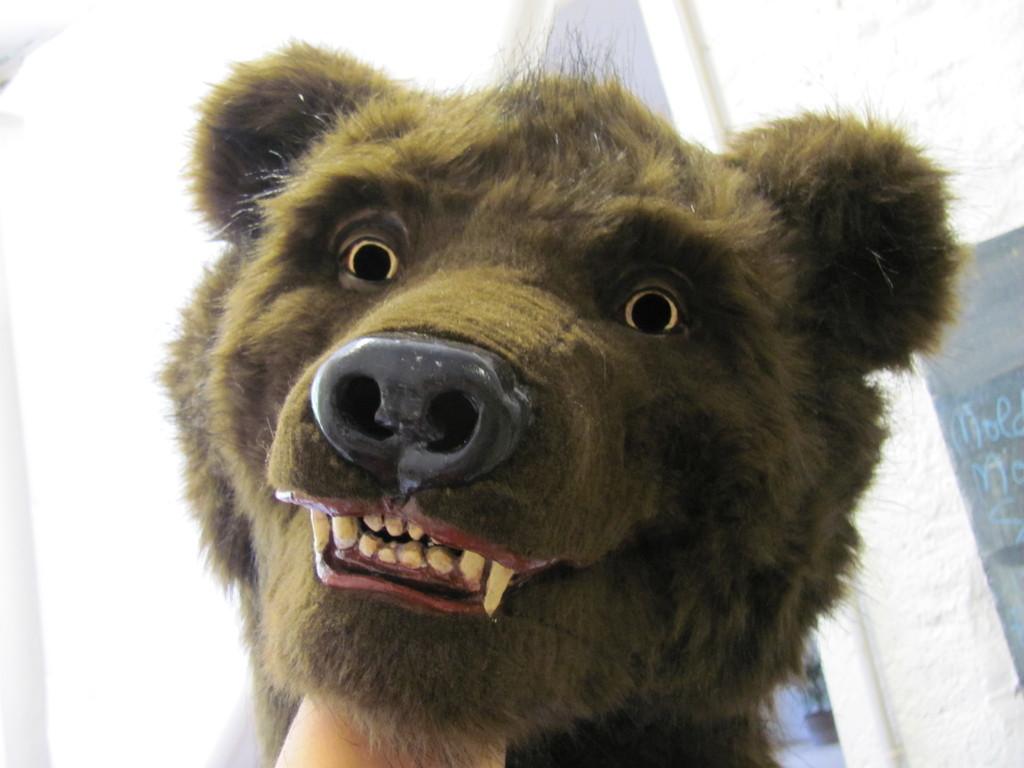 l'ours chez le coiffeur...