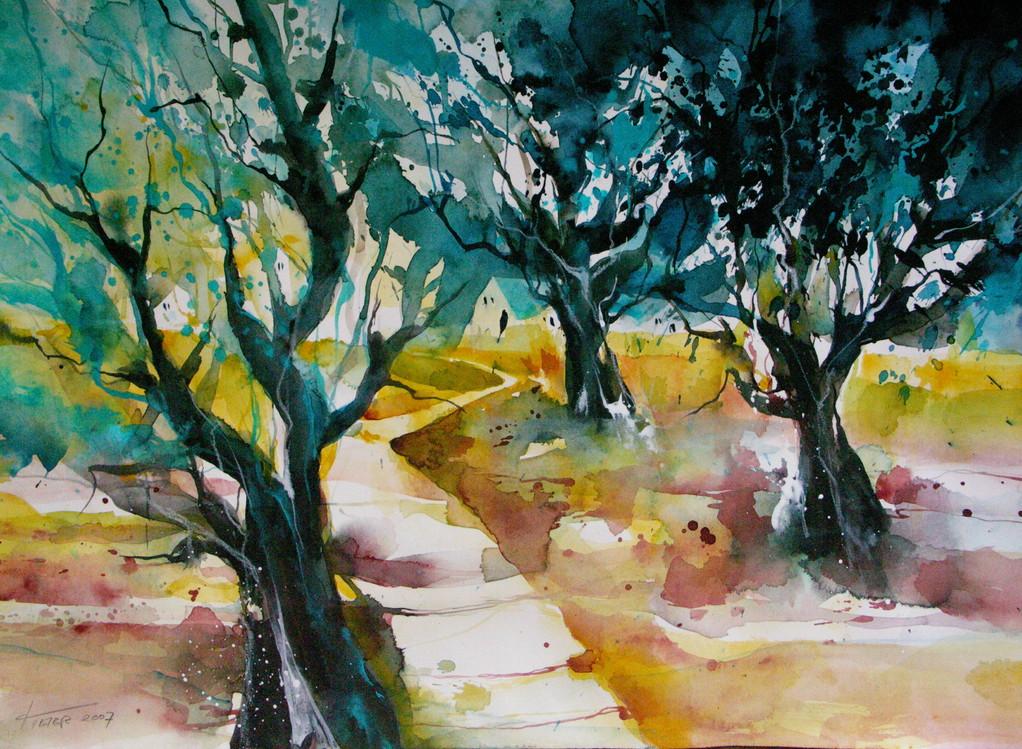 Serenata Mallorquine - Olivenbäume bei Sollér