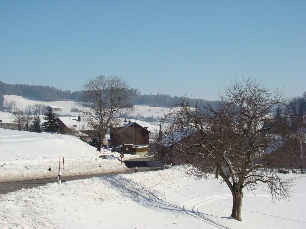 Winter im Toggenburg