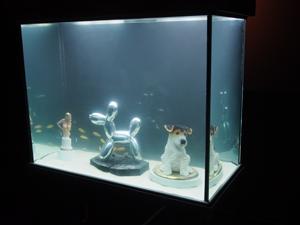 "Bild: ""Fish Museum"" von Thomas Mailaender"