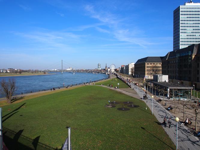 Bild: Apollowiese mit Rhein im Hintergrund