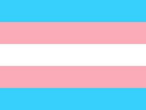 Logo: Trans*-Flagge
