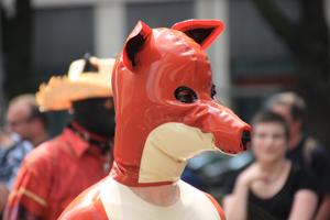 Bild: Petplayer beim CSD Düsseldorf