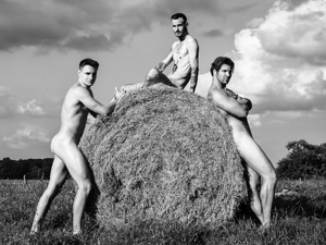 Bild: Männerakte an Strohballen
