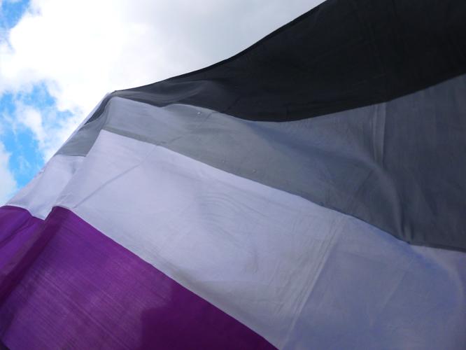 Bild: Asexuellen-Flagge
