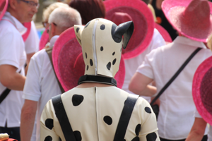 Bild: Petplayer beim Düsseldorfer CSD