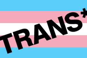 Bild: Trans*