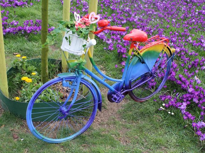 Bild: Fahrrad in Regenbogenfarben