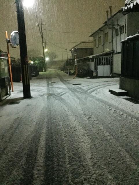 マイヅル 雪