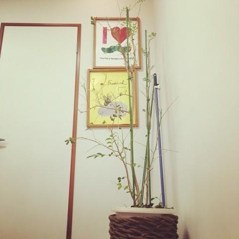 舞鶴 美容室 プライベートサロン ヘナ 西舞鶴