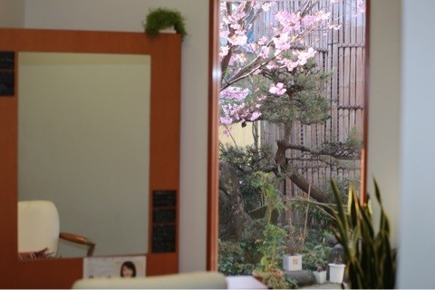 舞鶴 美容室