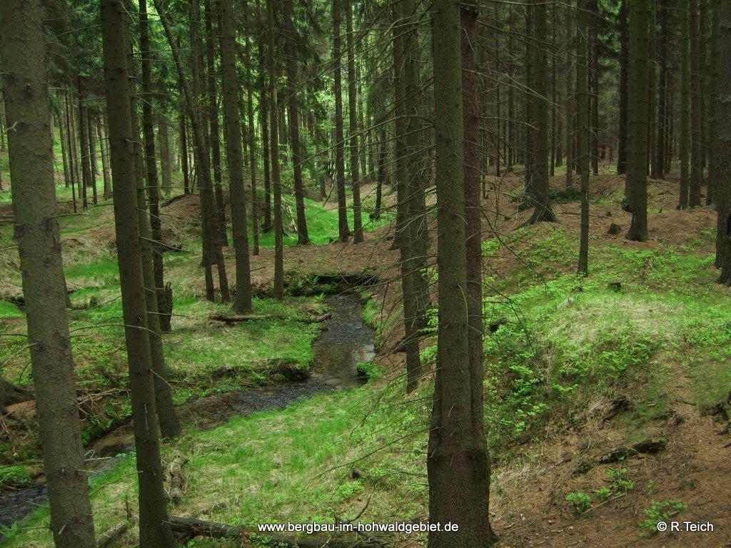 Seifhalden an der Bublava / Seifenbach, Lobendau