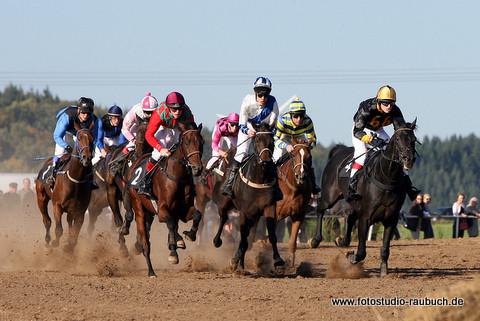 Fotos Pferderennen Galopp