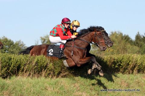 Fotos Pferderennen Galopp+Trab
