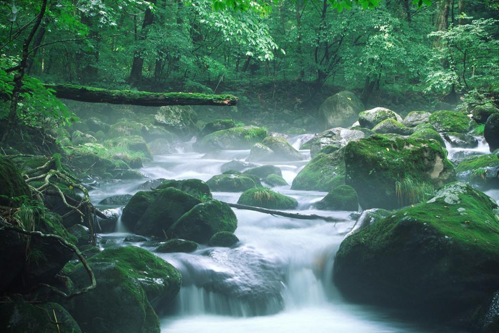 大自然の息吹が吹きこまれた・・・・悠久の時を経て湧きいでる水・・・