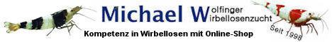 Garnelen Nürnberg, Onlineshop, Michael Wolfinger, Garnelen Zucht,