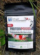 Proteinpower enthält alle für Garnelen notwendigen Nährstoffe an Aminosäuren und Proteinen.