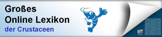Das Große Online Lexikon der Crustaceen. Garnelen und Krebse
