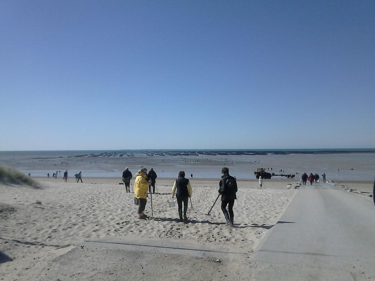 Grande marée.