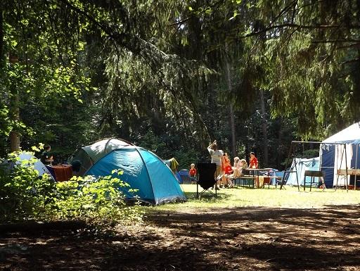 Bunte Zelte im Wald auf einem Natur-Campingplatz in Deutschland.