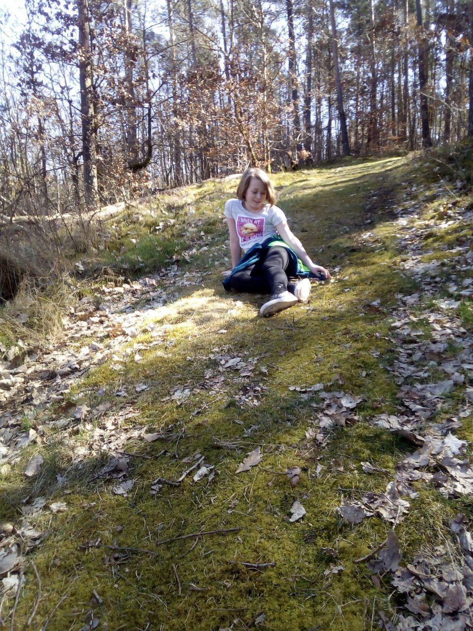 Kleiner Spaziergang im Wald