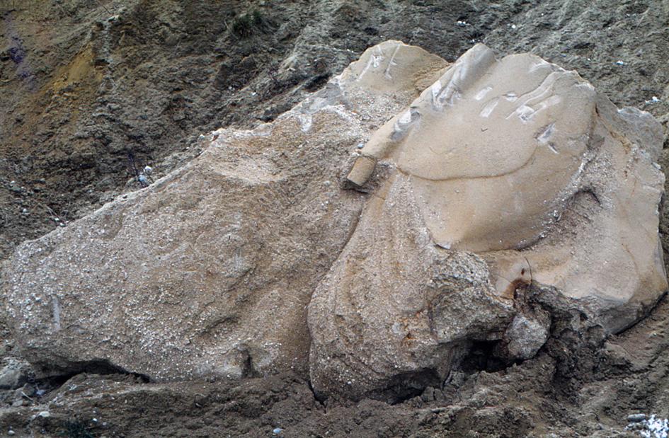 Abb. 6: Separat gelagerte, karbonatisch zementierte Blöcke.