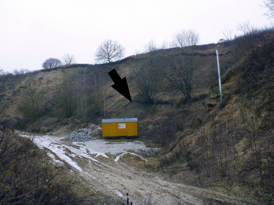 Abb. 3: Stillgelegter nördlicher Bereich der Sandgrube (...)