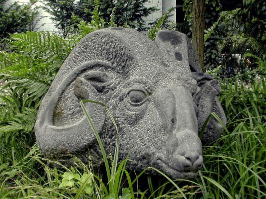 Widderkopf - Basaltlava, 75 cm x 65 cm x 55 cm