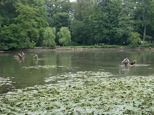 Arbeitseinsatz am Teich