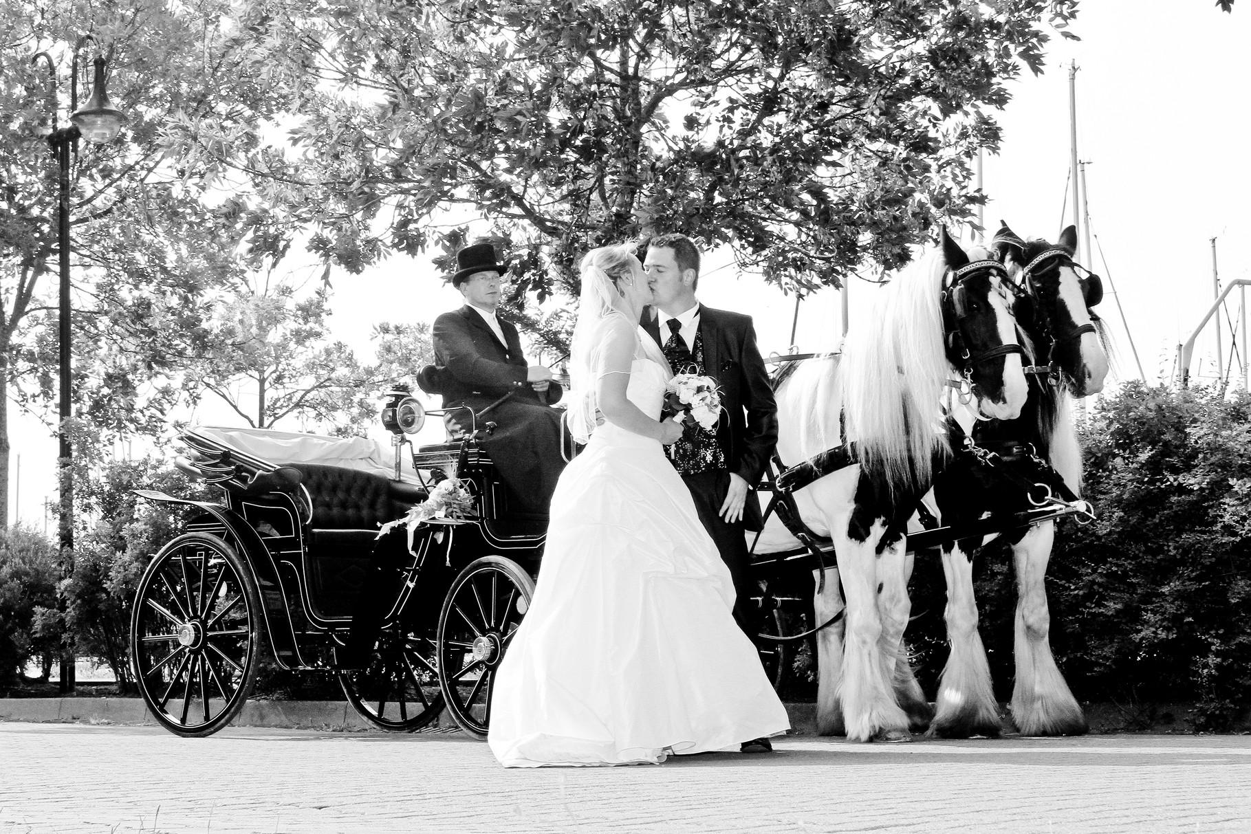 Hochzeitskutsche im Stadthafen Rostock /mit freundlicher Genehmigung des Brautpaares
