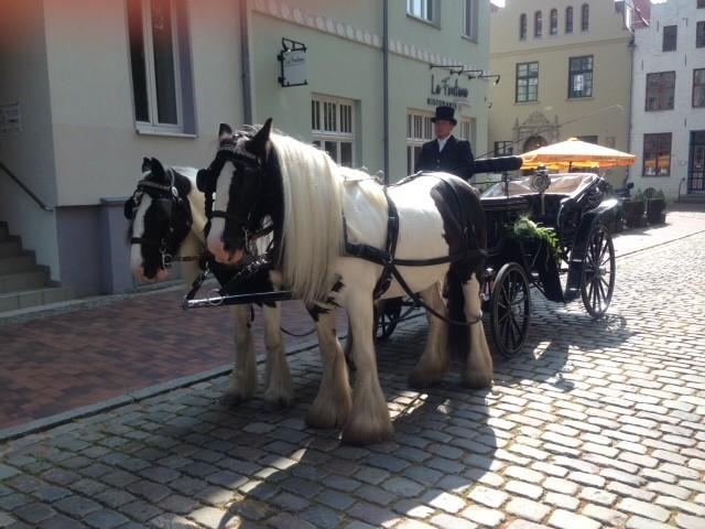 Hochzeitskutsche Stadtzentrum von Rostock