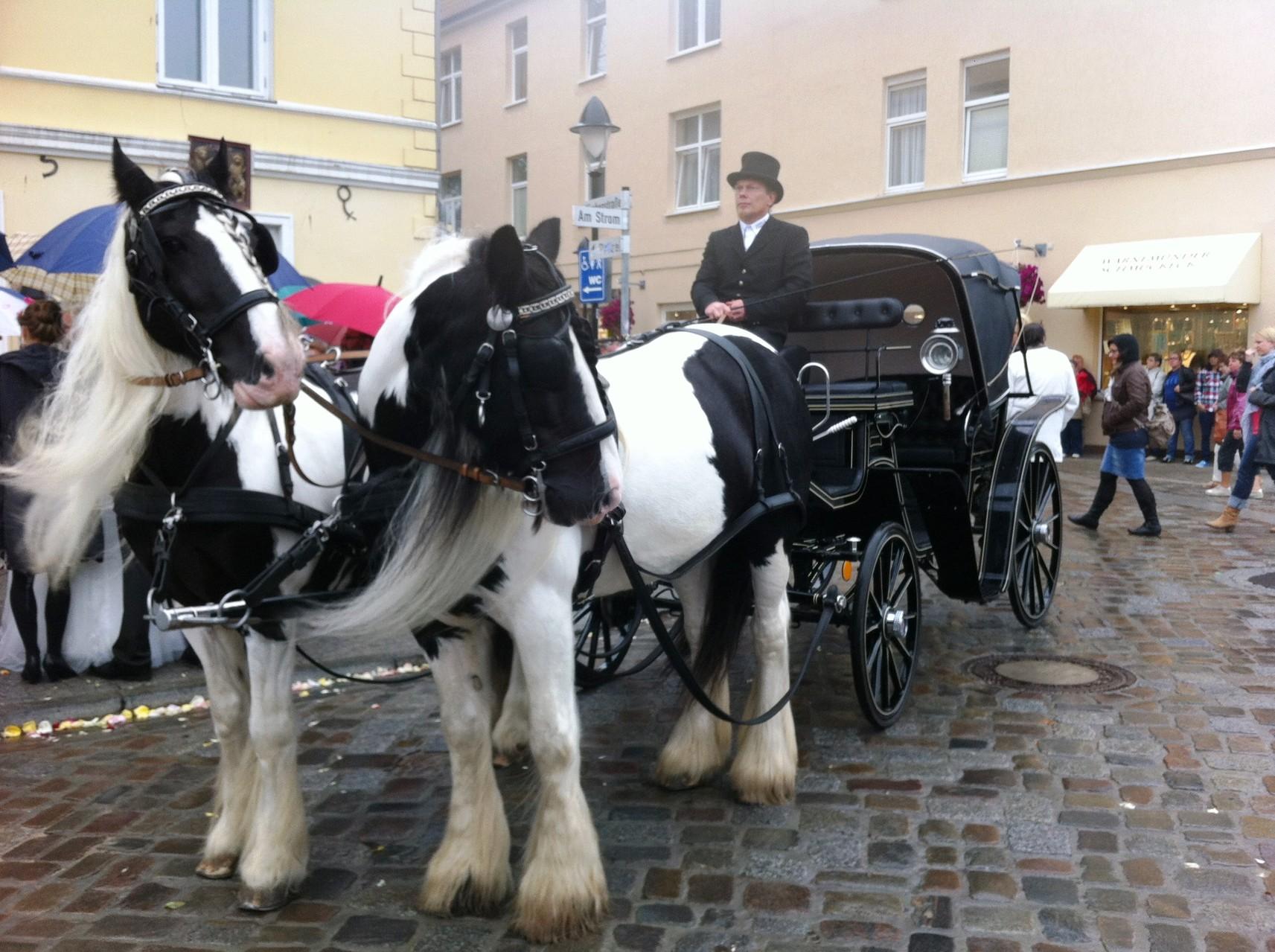 Hochzeitskutsche in Warnemünde
