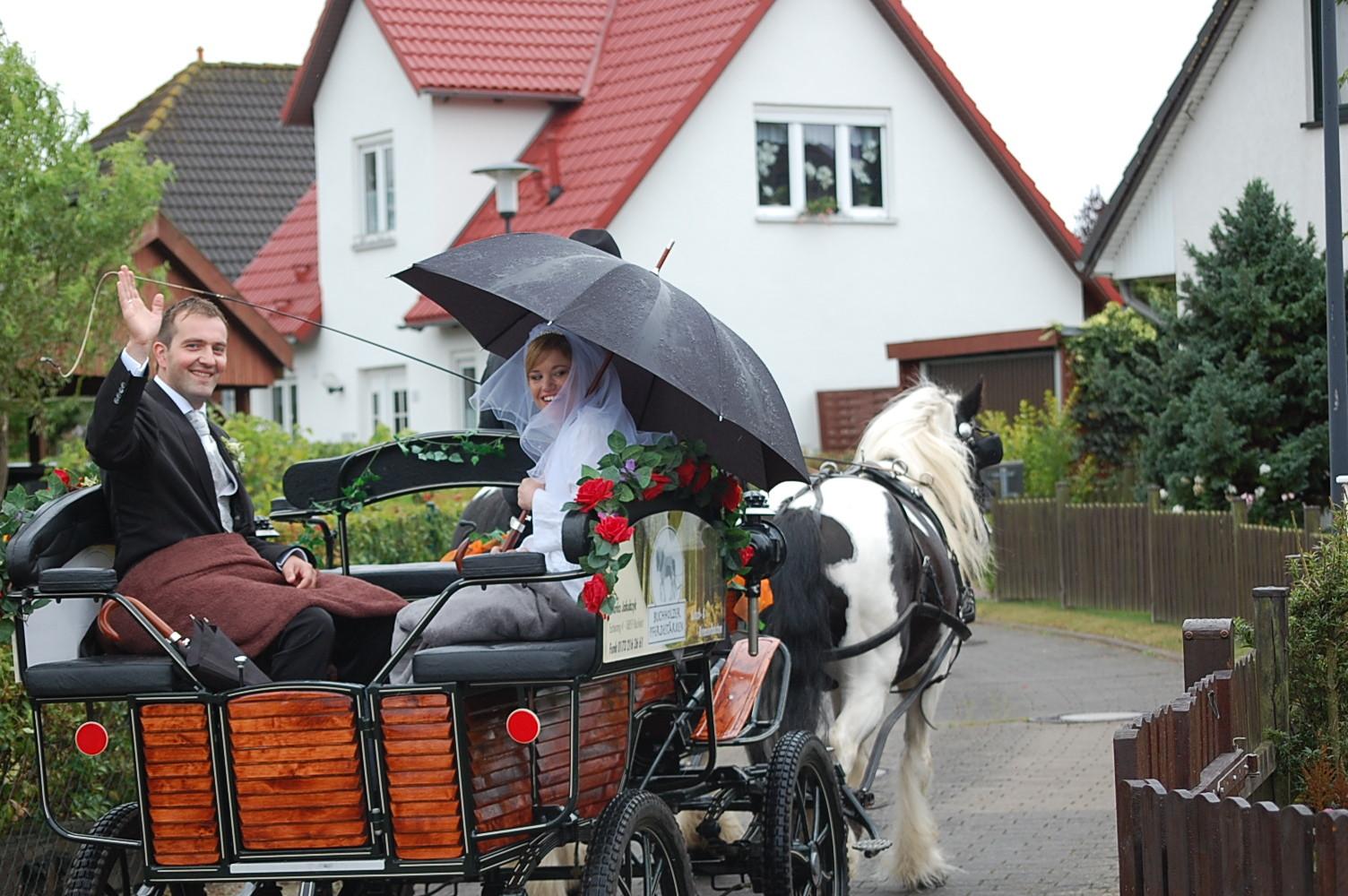 Hochzeitskutsche bei Rostock /mit freundlicher Genehmigung des Brautpaares