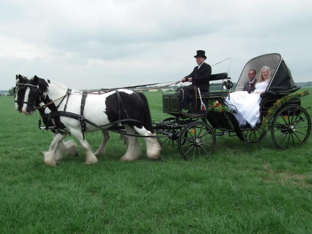 Hochzeitskutsche Gut Hohen - Luckow /mit freundlicher Genehmigung des Brautpaares