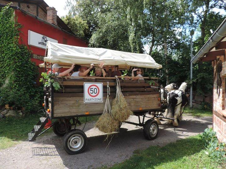 """Tagesausflug """"Zum Kutscher"""" nach Parkentin"""