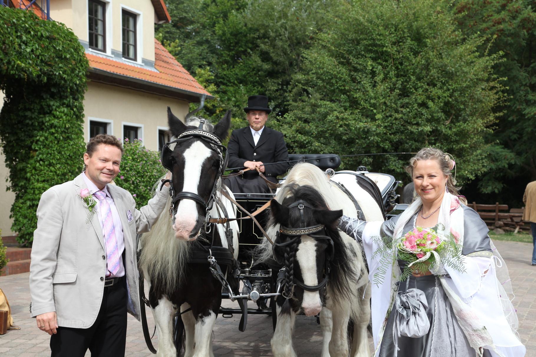 Hochzeitskutsche an der Ostsee /mit freundlicher Genehmigung des Brautpaares