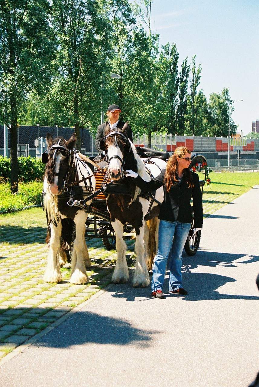 Ausflug mit Ronja und Finola
