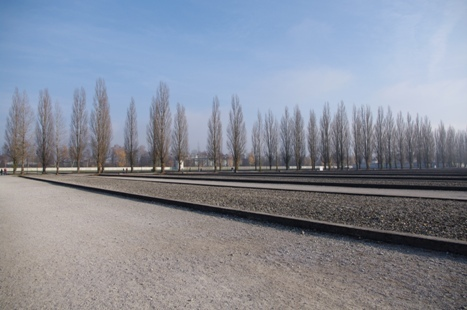 Sechs Millionen Juden wurden von den Nazis ums Leben gebracht