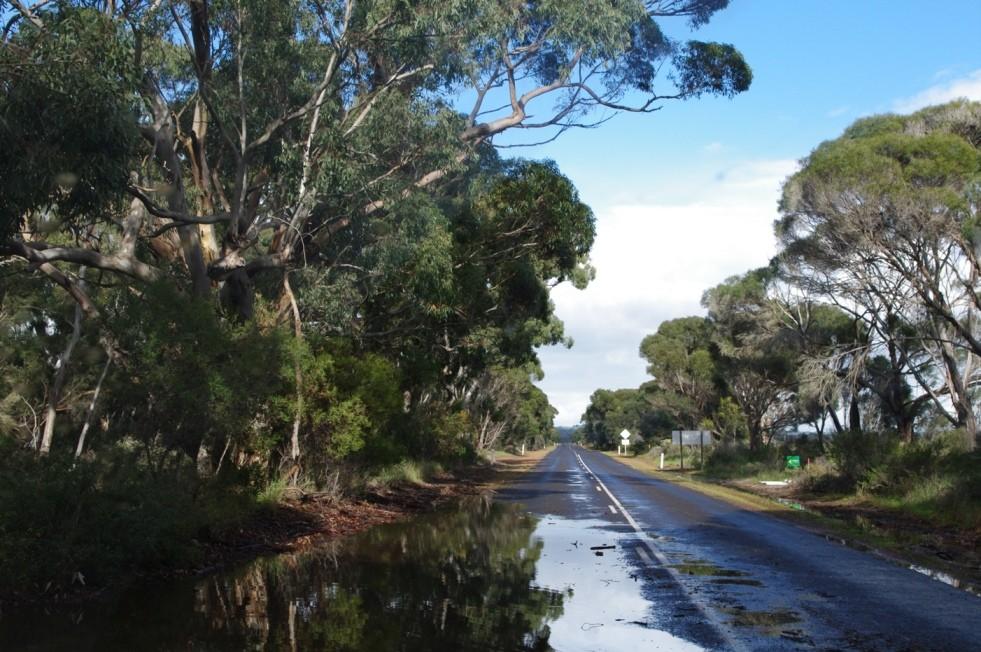 Water Over Road II