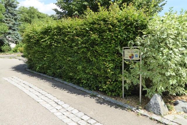 Der Eingang befindet sich auf der Rückseite des Grundstücks... folgen sie einfach der Hecke