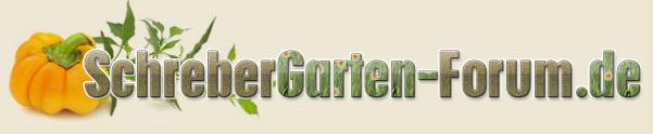 Alles rund ums das Thema Kleingarten