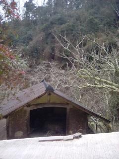 奈良市の積雪状況過去