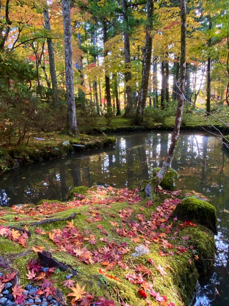 清瀧大権現の池