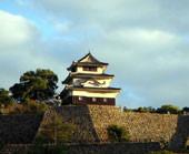 香川県丸亀市で年に二回野外音楽ライブを開催しています。