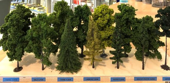 Die Baumauswahl