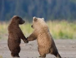 Мы пойдём с тобой по полю вдвоём.