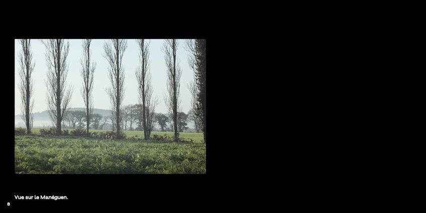 une vue sur la montagne blanche, le Manéguen. Depuis, le rideau de peupliers est tombé. photo nature bretagne @johannegicquel