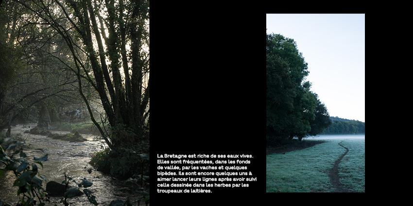 petit matin du côté de Bubry. photo nature bretagne @johannegicquel
