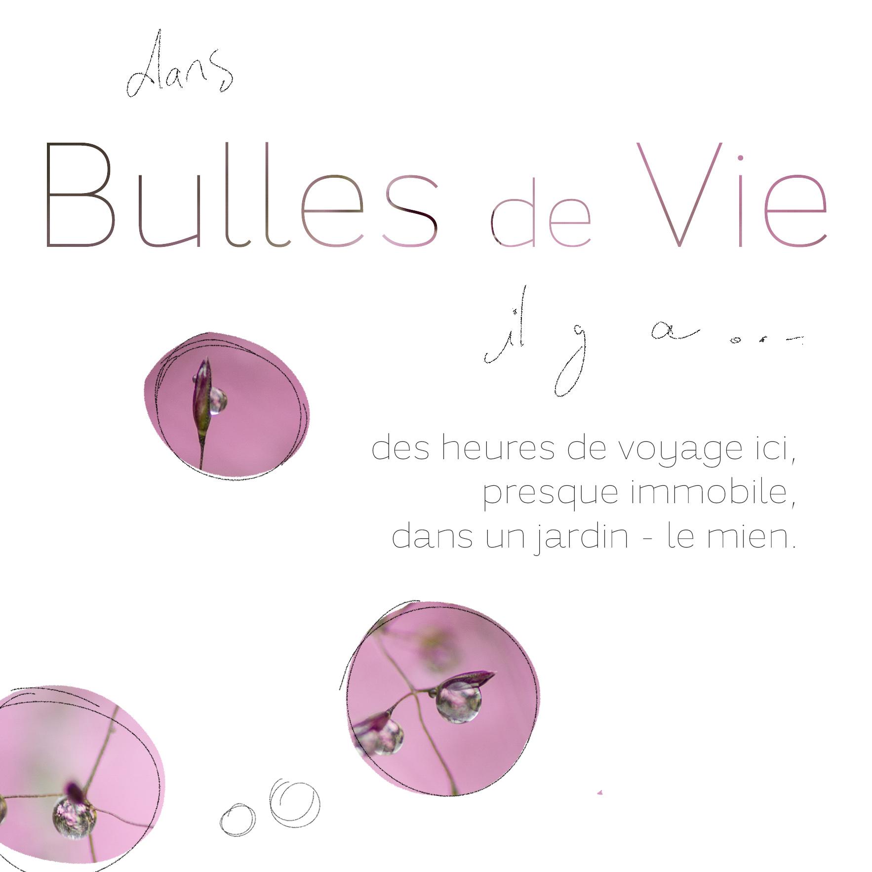 bulles de vie @johannegicquel