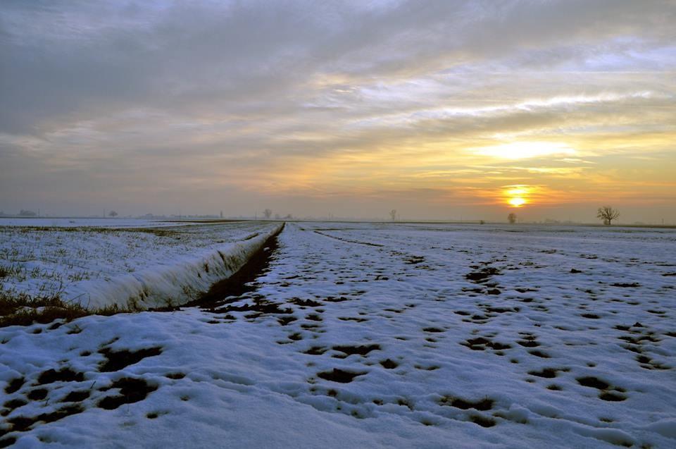 Pro Loco Sissa - Inverno (foto di Luca MV)